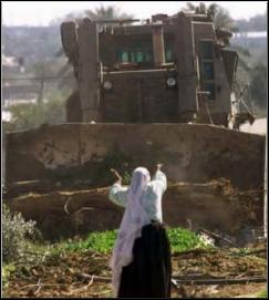 Palestinian Woman Confronts Israeli Bulldozer
